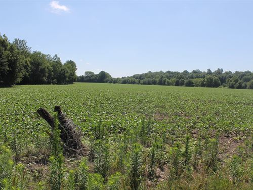 Livingston County Missouri Acreage : Trenton : Livingston County : Missouri