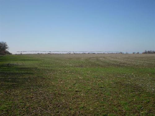 Highly Tillable Row Crop Farm : Ionia : Benton County : Missouri