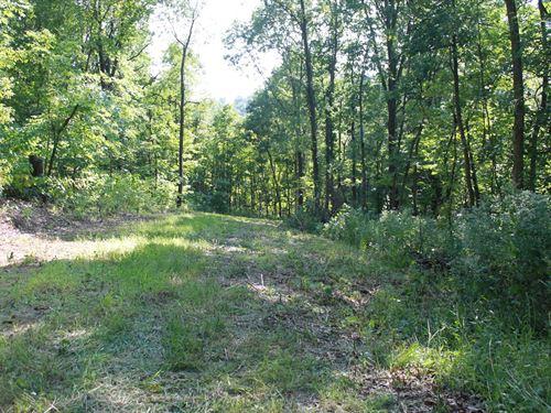 Deer & Turkey Hunting Farms : Louisiana : Pike County : Missouri