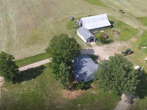 Cattle Farm South Central Missouri : Mountain Grove : Texas County : Missouri