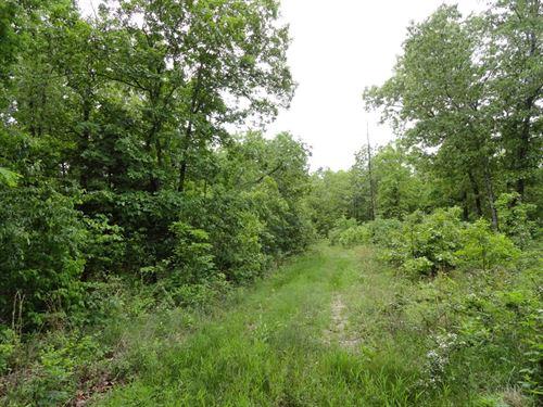 Recreational Hunting Property Echo : Salem : Dent County : Missouri