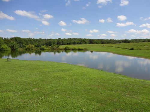 Lovely 73 Acre Farm Salem : Salem : Dent County : Missouri