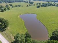 Farm Southern Missouri Pasture : Summersville : Texas County : Missouri