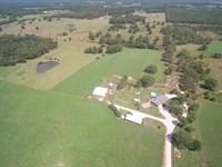 Missouri Ozarks Cattle Farm Jacks : Summersville : Shannon County : Missouri