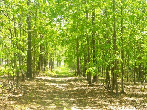 Land, 60 Acres, Building Sites : West Plains : Howell County : Missouri
