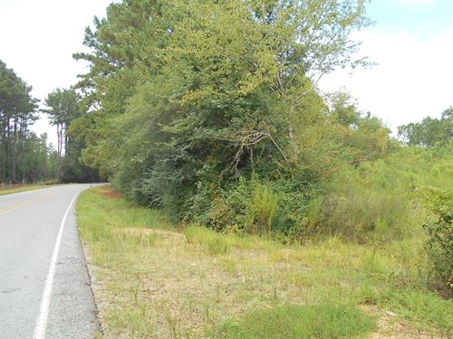 41 Acres Franklin County Brookhaven : Brookhaven : Franklin County : Mississippi