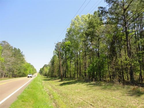 Land 10 Acres Scott County Forest : Forest : Scott County : Mississippi
