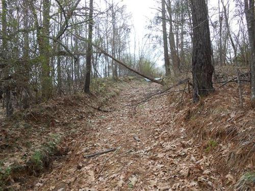 Land 100 Acres Jefferson County : Fayette : Jefferson County : Mississippi