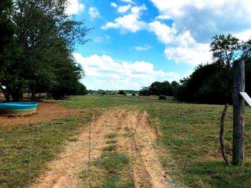108 Acres Pasture Land, Oktoc Rd : Starkville : Oktibbeha County : Mississippi