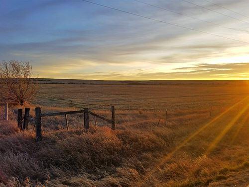 Irrigated Land Located West Malta : Malta : Phillips County : Montana
