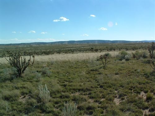 NM Commercial Land in Edgewood : Edgewood : Santa Fe County : New Mexico