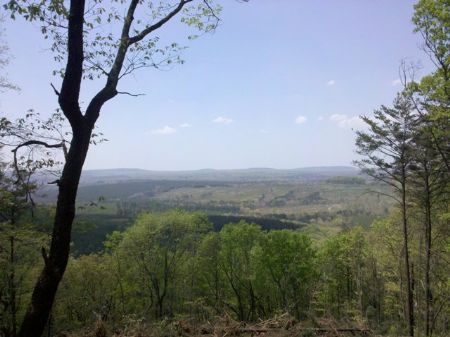 645 Acres/timber/views : Pikeville : Bledsoe County : Tennessee