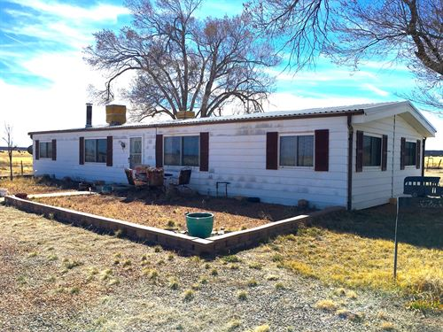 Central NM Home Moriarty Horses : Moriarty : Torrance County : New Mexico