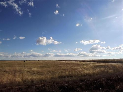 Vacant Land in McIntosh New Mexico : Moriarty : Torrance County : New Mexico