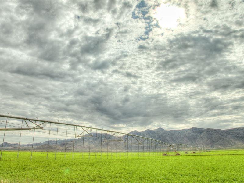 Farm New Mexico Arizona Border 2 For Sale Rodeo Hidalgo