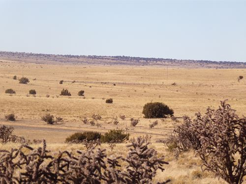 New Mexico Ranch Land 661 Acres : Santa Rosa : Guadalupe County : New Mexico