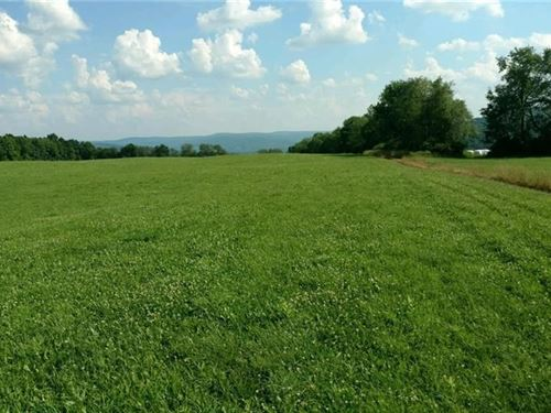 43+ Acres of Land in Bainbridge, NY : Bainbridge : Chenango County : New York