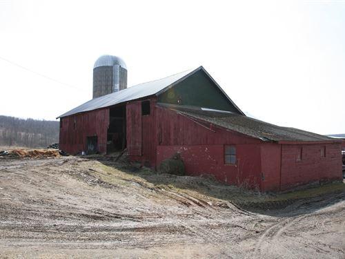 Dairy Farm, Transferable Milk : Berkshire : Tioga County : New York