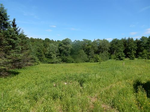 Hunting Property in Chenango County : Lincklaen : Chenango County : New York