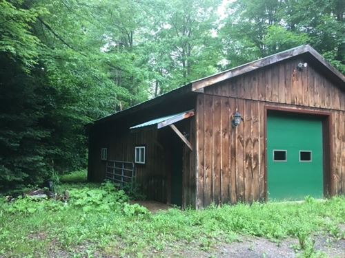 Cabin 13 Acres Adirondack Foot : Little Falls : Herkimer County : New York