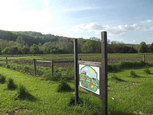 Family Farm 113 Acres Pa/Ny, Big : Pine City : Chemung County : New York