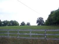 16.89 Waterfront Acres Lake : Jenkinsville : Fairfield County : South Carolina