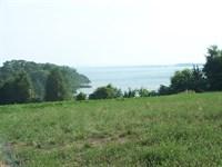 Waterfront Acreage Lake Monticello : Jenkinsville : Fairfield County : South Carolina
