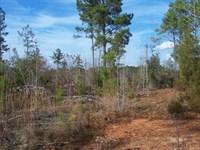 Fairfield County, SC Land For Sale : Winnsboro : Fairfield County : South Carolina