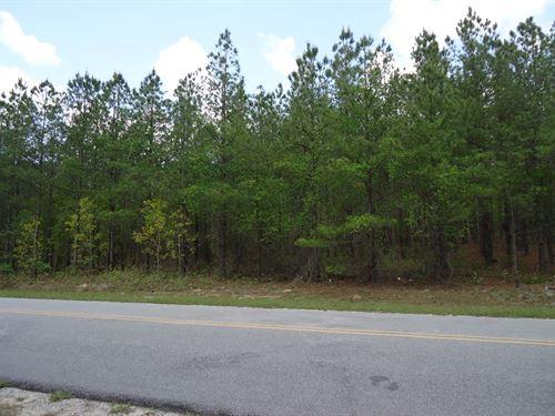 5.7 Acres Beautiful Wooded Property : Cassatt : Kershaw County : South Carolina