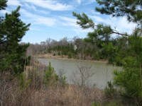 Large Acreage Tn, Timber, Hunting : Adamsville : McNairy County : Tennessee