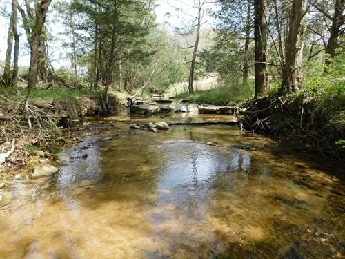 Tn Land Home, Creeks, Pasture : Clifton : Wayne County : Tennessee