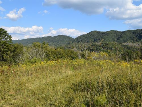 East Tennessee Vacant Land Hawkins : Eidson : Hawkins County : Tennessee