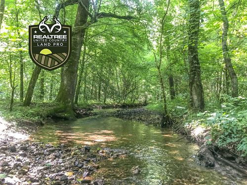 22.8 Acres Gorgeous Kelso : Kelso : Lincoln County : Tennessee