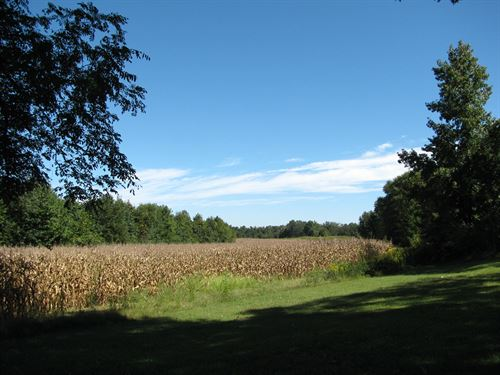 93Ac Row Crop Farm Tn, Spring : Pinson : Madison County : Tennessee