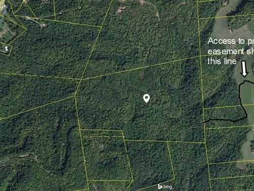 Hunting Land, Recreational Land : Robbins : Scott County : Tennessee
