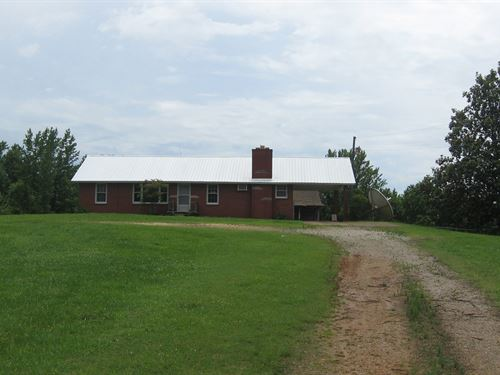 Old Home Site, Farm, Cattle, Horses : Sardis : Henderson County : Tennessee