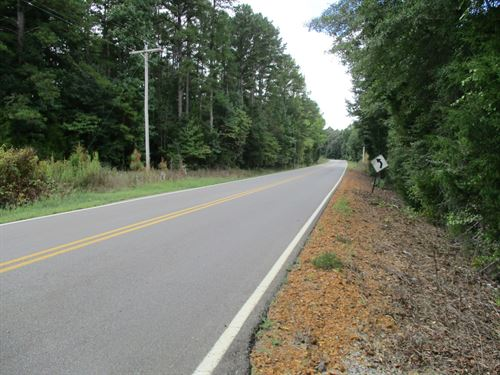 Hunting Property 89 Acres Hwy 57 : Selmer : McNairy County : Tennessee