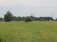 10 Acres For Sale In Bowie County : De Kalb : Bowie County : Texas