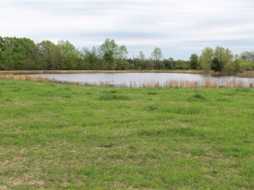 Ranch Style Brick Home / Ranch Land : De Kalb : Bowie County : Texas