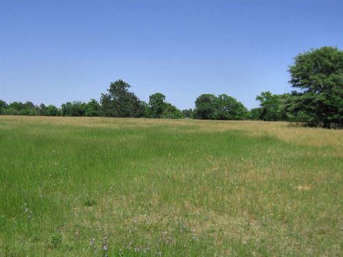 Rural Acreage, Home Frankston, East : Frankston : Anderson County : Texas