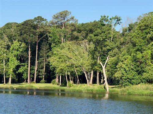 Waterfront Acreage Lake Palestine : Frankston : Henderson County : Texas