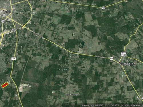 30 Acres Wooded Residential Land : Lufkin : Angelina County : Texas