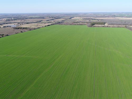 Large Income Investment Farm Paris : Paris : Lamar County : Texas