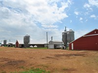Poultry Farm Acreage North East : Pittsburg : Titus County : Texas