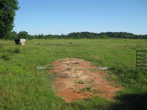 East Texas Ranch : Rusk : Cherokee County : Texas