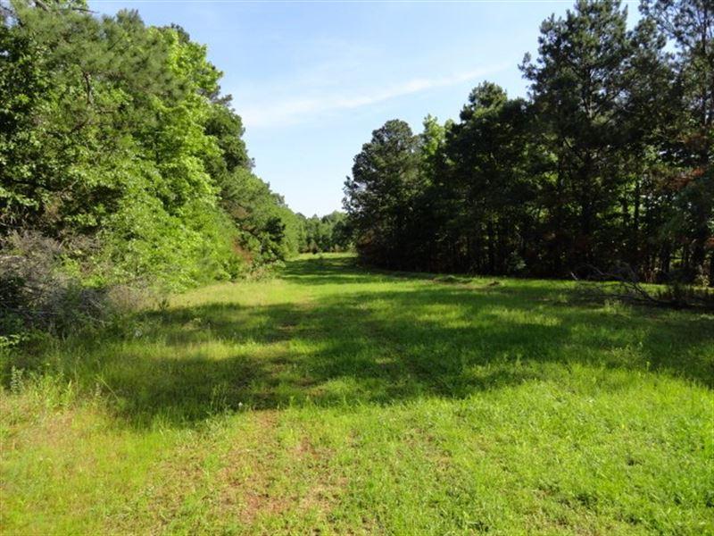 East Texas Land, Jacksonville, TX : Farm for Sale : Rusk