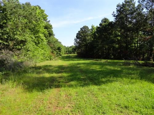 East Texas Land, Jacksonville, TX : Rusk : Cherokee County : Texas
