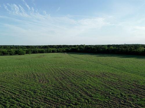 Northeast Texas Land, Recreational : Terrell : Kaufman County : Texas