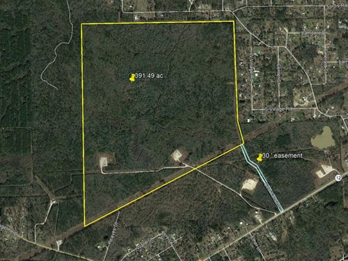 391 Acres Beautiful Development : Vidor : Orange County : Texas