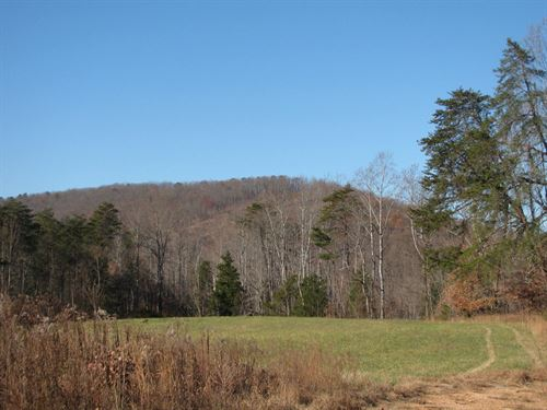 42Ac View Turkey Cock Mountain : Chatam : Pittsylvania County : Virginia